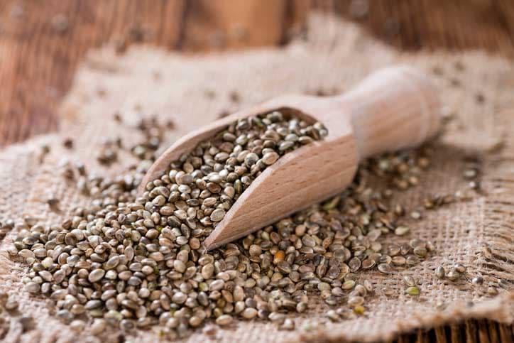 graines de chanvre nutrition